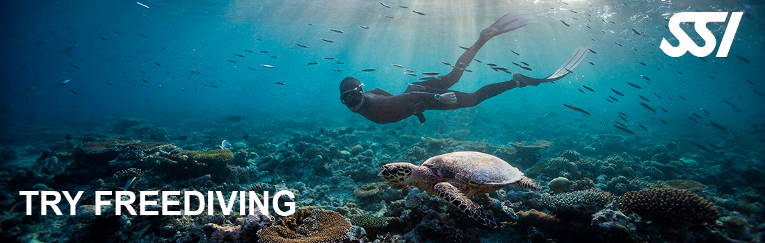Try Freediving — пробное занятие